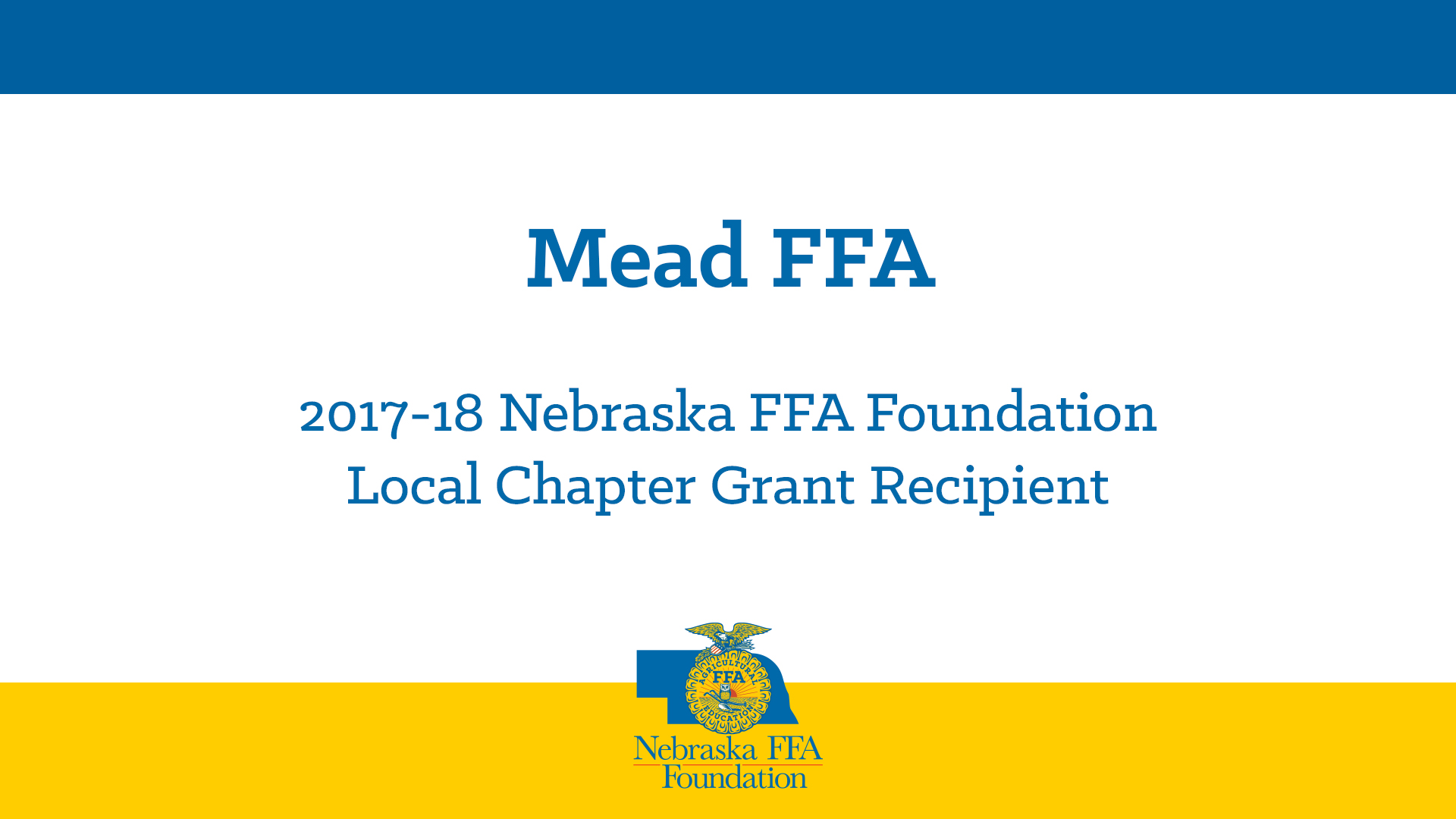 2017 Local Chapter Grant Recipient: Mead