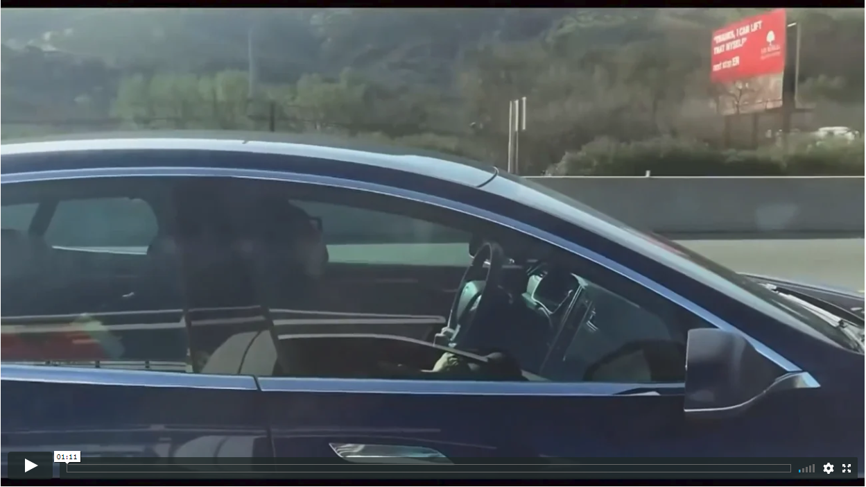 Distracted Driver Asleep At The Wheel of a Tesla