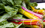 Rainbow Chard - bunches