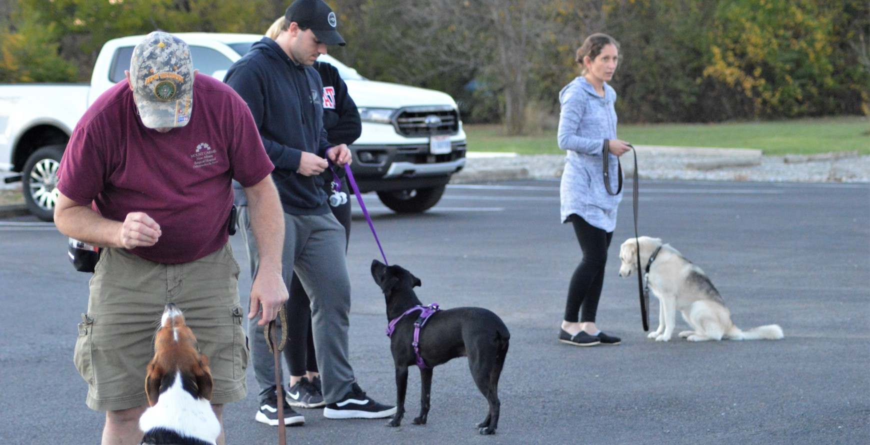 Interested in attending our free dog training classes?