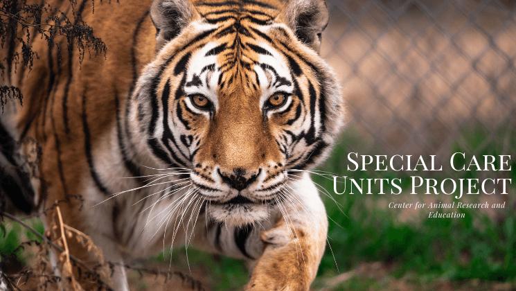 Special CARE Units Fundraiser Success