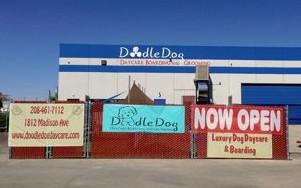 Doodle Dog Daycare