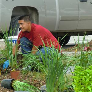 Metro Community College Bioretention Garden