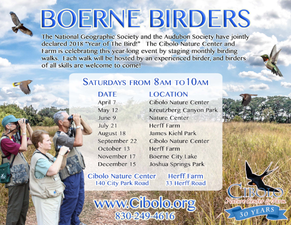 BOERNE CITY LAKE: Boerne Birders
