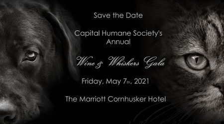 Wine & Whiskers Gala