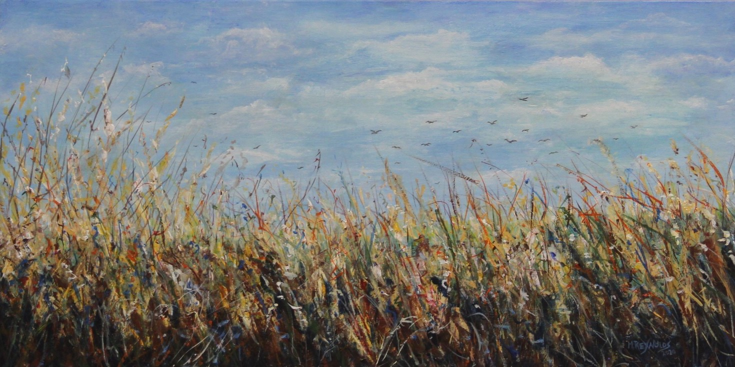 Nebraska's Colorful Prairie Grasses