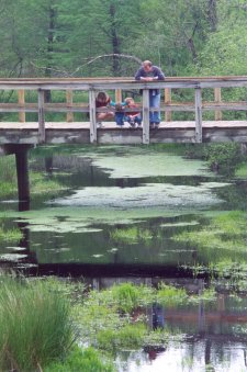 Family enjoying wetland