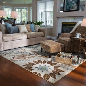 Area Rug Cleaning