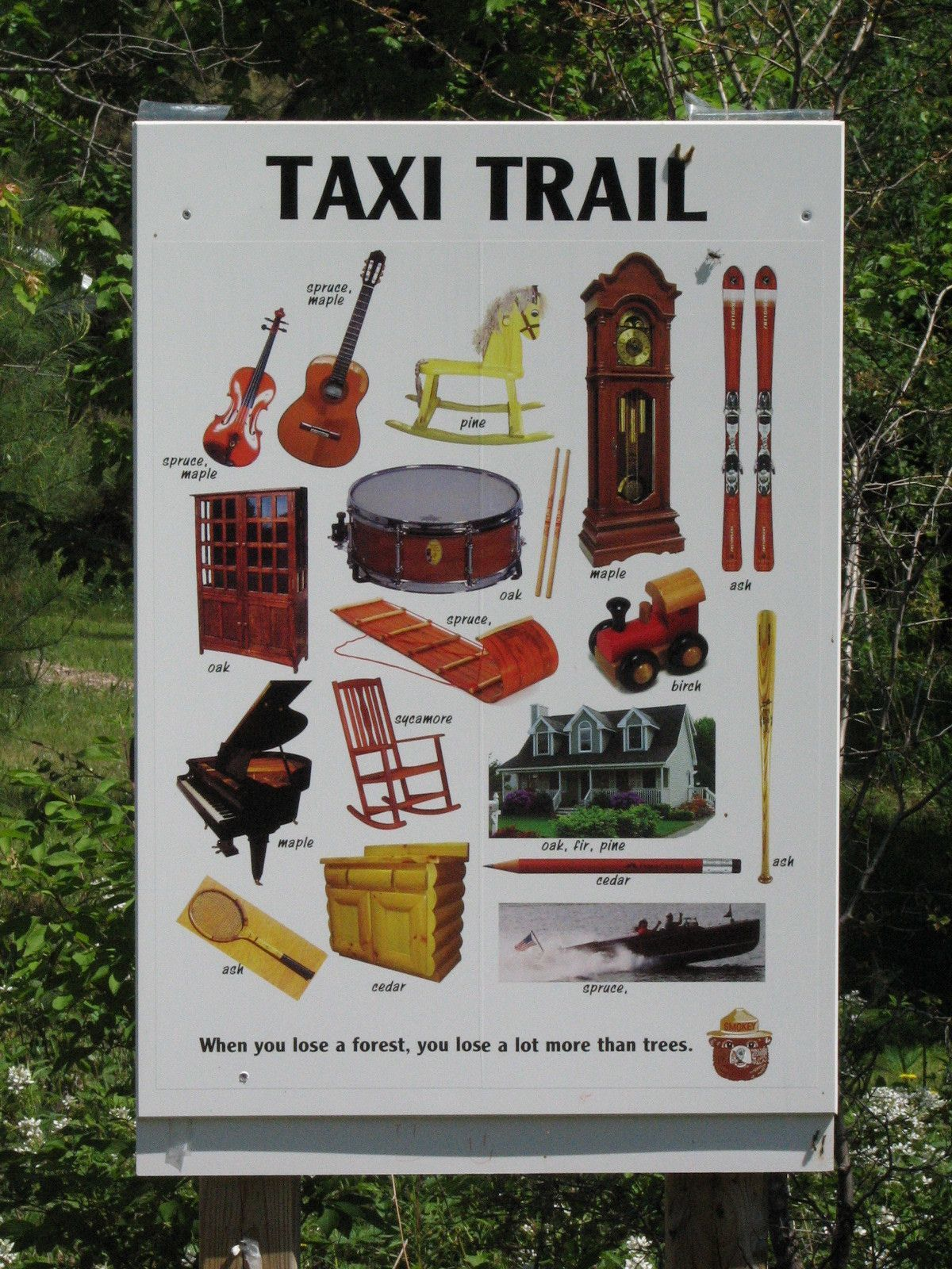 The Taxi Trail