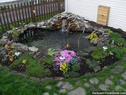 Tips for Backyard Ponds
