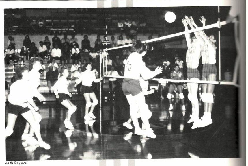 Skylights Volleyball Alumni Match