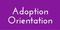 Click on the Adoption Orientation Box to View the Video