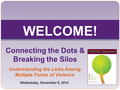 Connecting the Dots & Breaking the Silos: Understanding the Links Among Multiple Forms of Violence