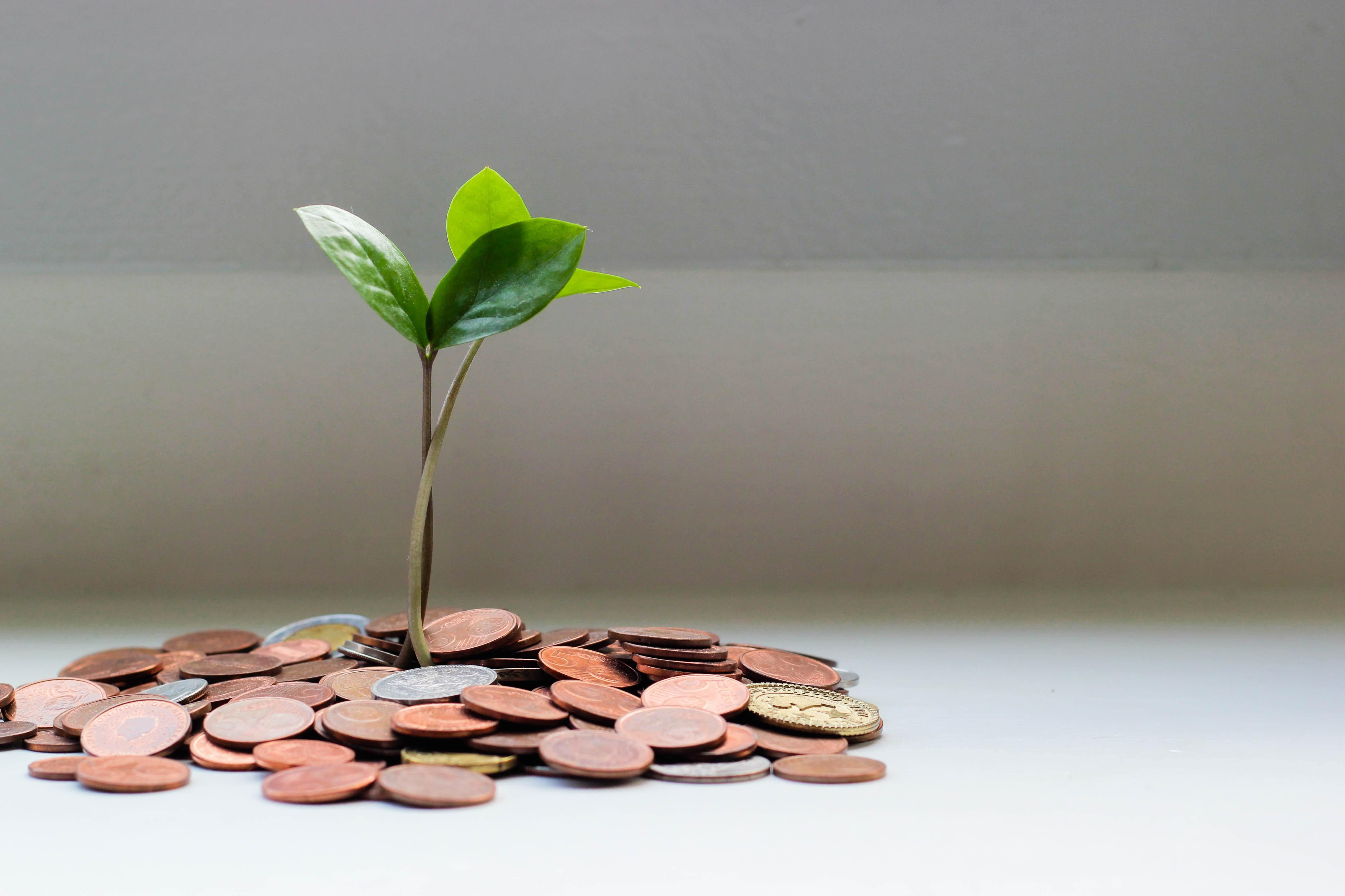 Funder Associations Driving Action on Local Impact Investing