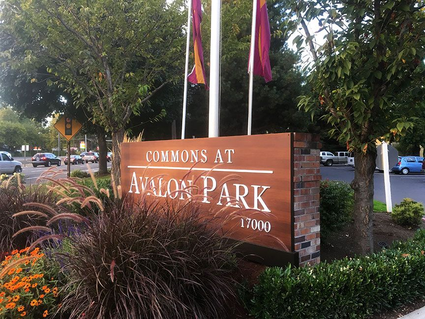 COMMONS AT AVALON PARK