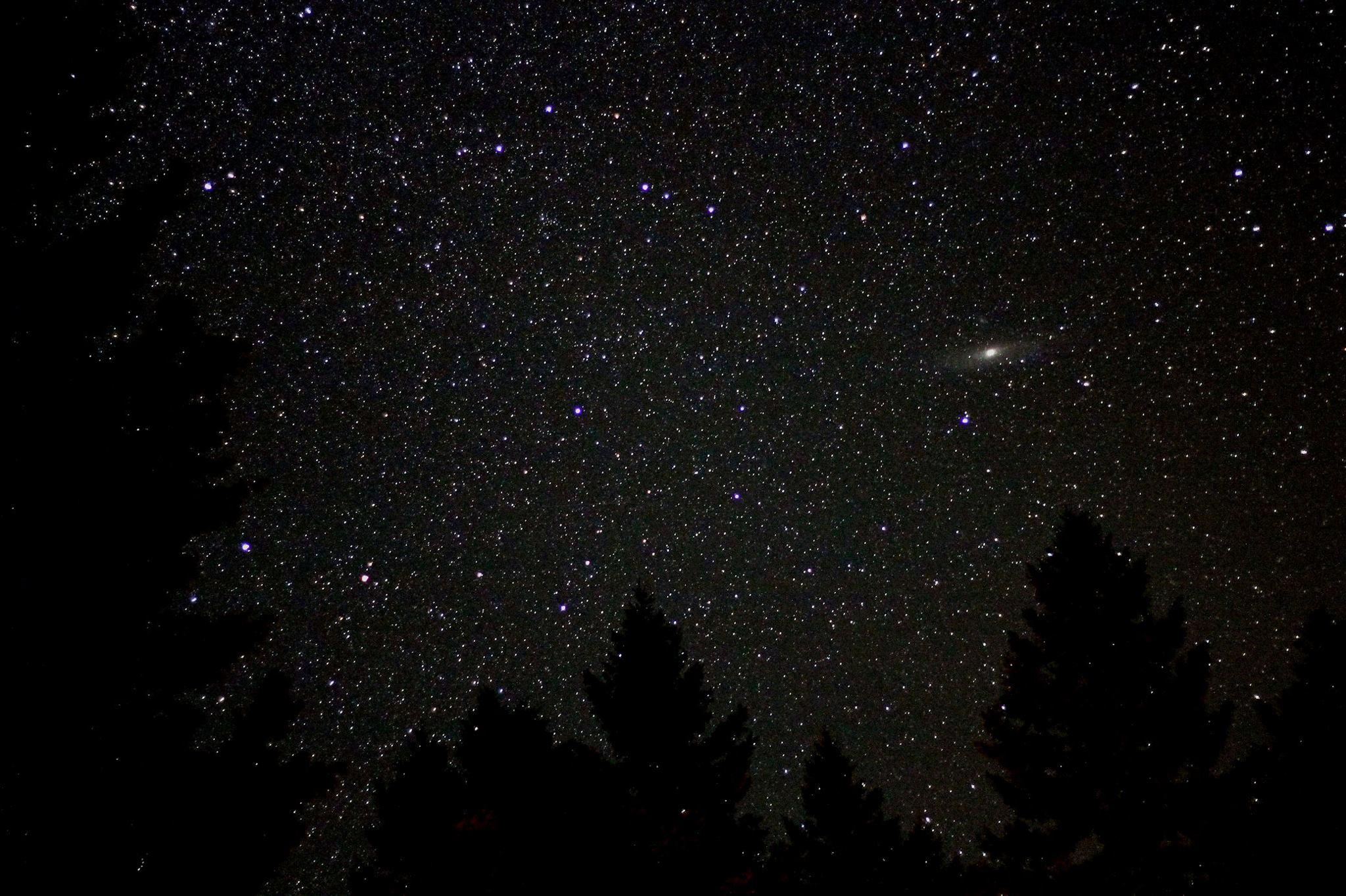 Moonlight Snowshoe Stroll with Planetarium Extravaganza!