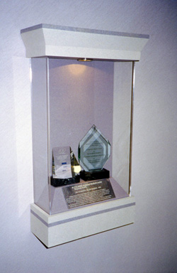Award Display Cabinet