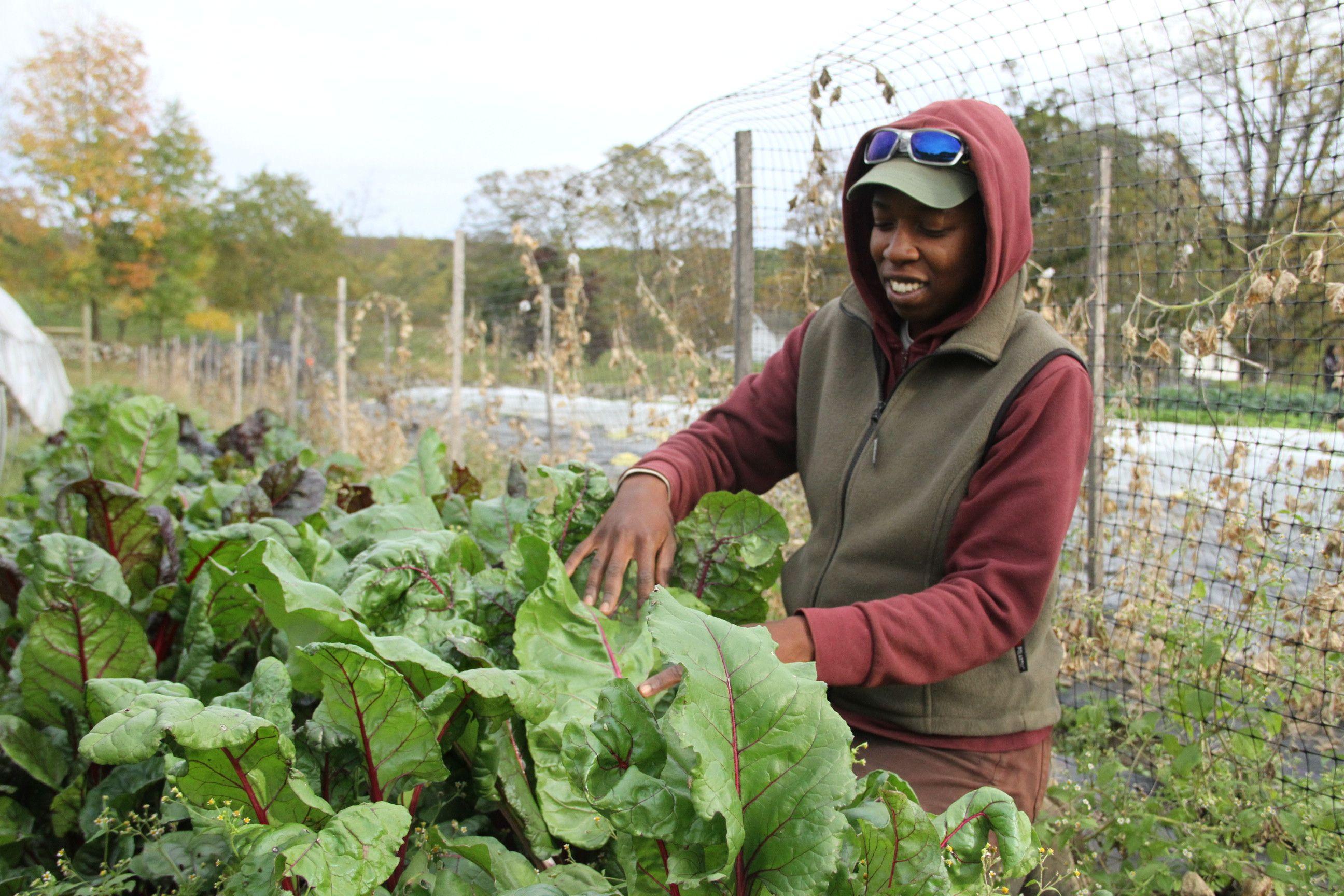 Farmer Training At-A-Glance