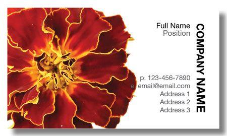 Model #063: Kwik Kopy Design and Print Centre Halifax Business Cards