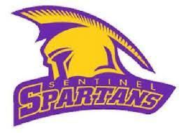 The above image shows the Sentinel's mascot.