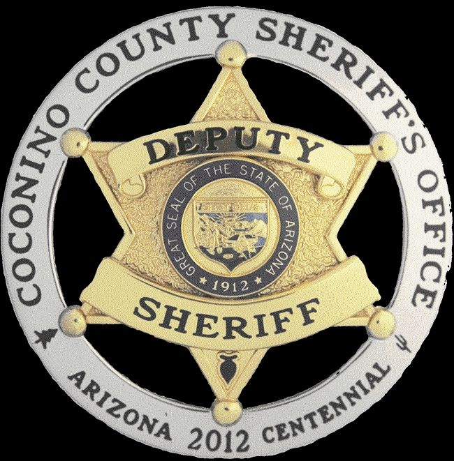 PP-1805- Carved Wall Plaque of the Star Badge of the Sheriff's Office, Coconino County, Arizona, Artist Painted with Metallic Gold Paint