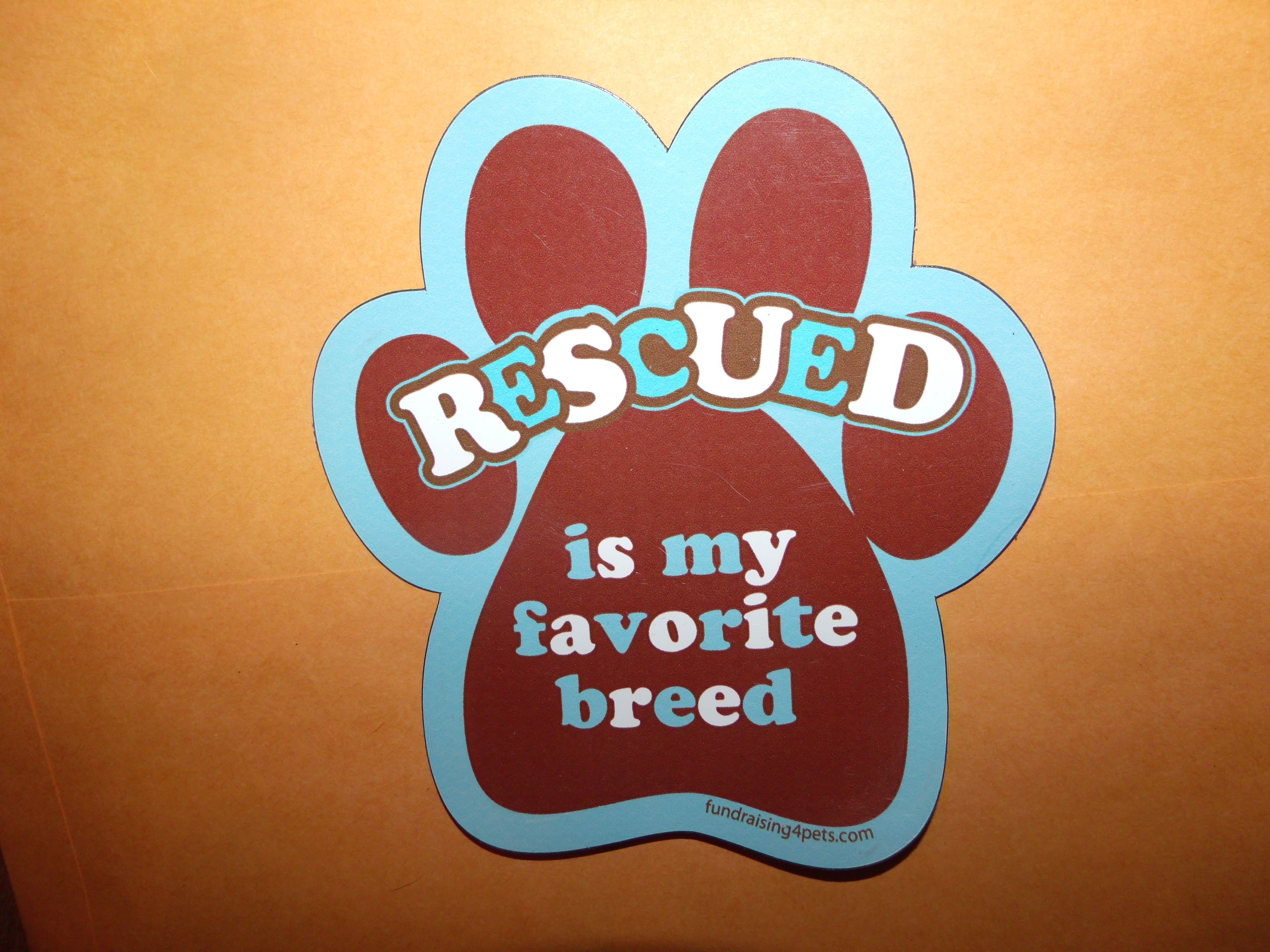 Rescue, favorite breed - paw print