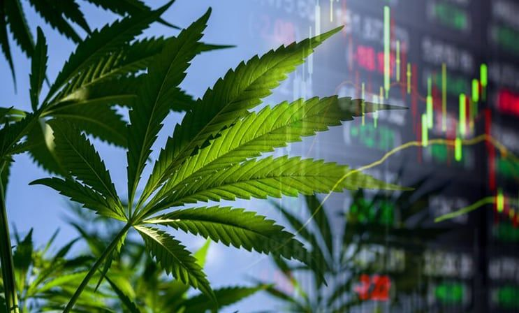 Valuation Issues for the Cannabis & Hemp Industries