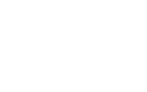 Southern States Sign Association Logo