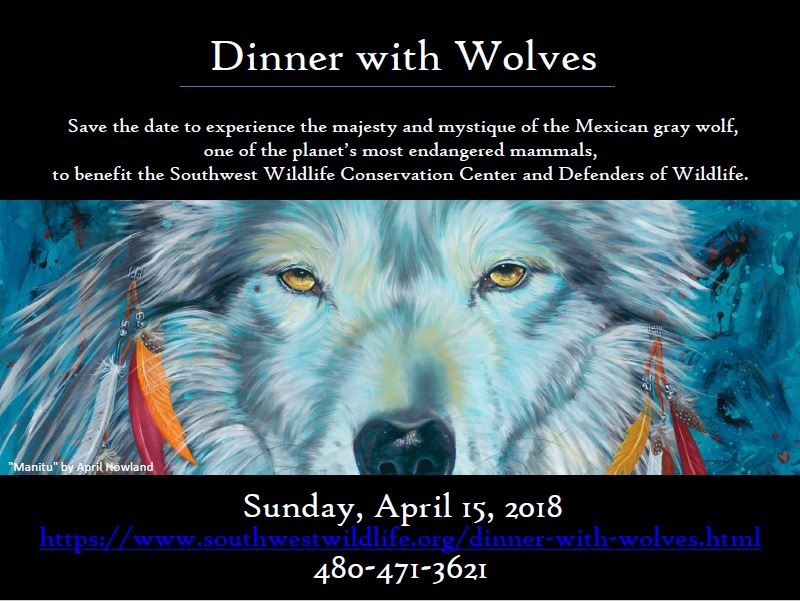 Dinner with Wolves Southwest Wildlife