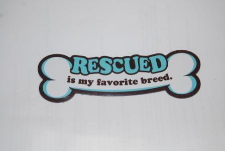 Rescued is my favorite breed, bone