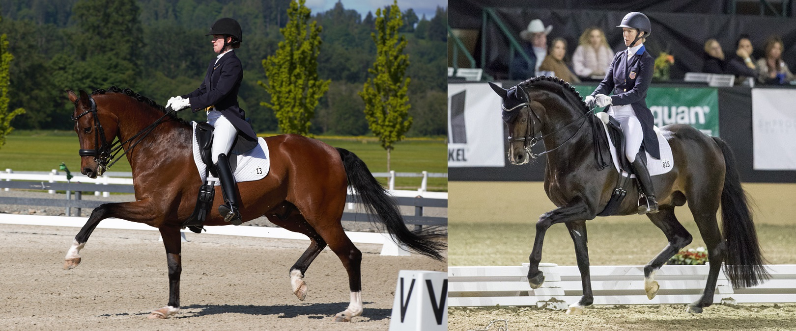 Alyssa Pitts and Sabine Schut Kery Awarded $25,000 Carol Lavell Advanced Dressage Prizes from TDF
