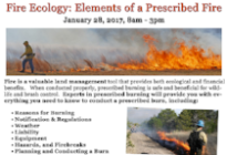 Fire Ecology: Elements of A Prescribed Burn