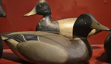 Floating Sculpture: Bruce Barclay Cameron Duck Decoy Collection
