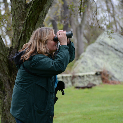 Audubon Seniore Director of Education Lauren Parmelee searches for birds.