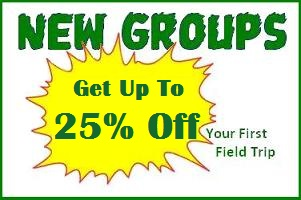 LEEP 50% New Group Discount (2013)