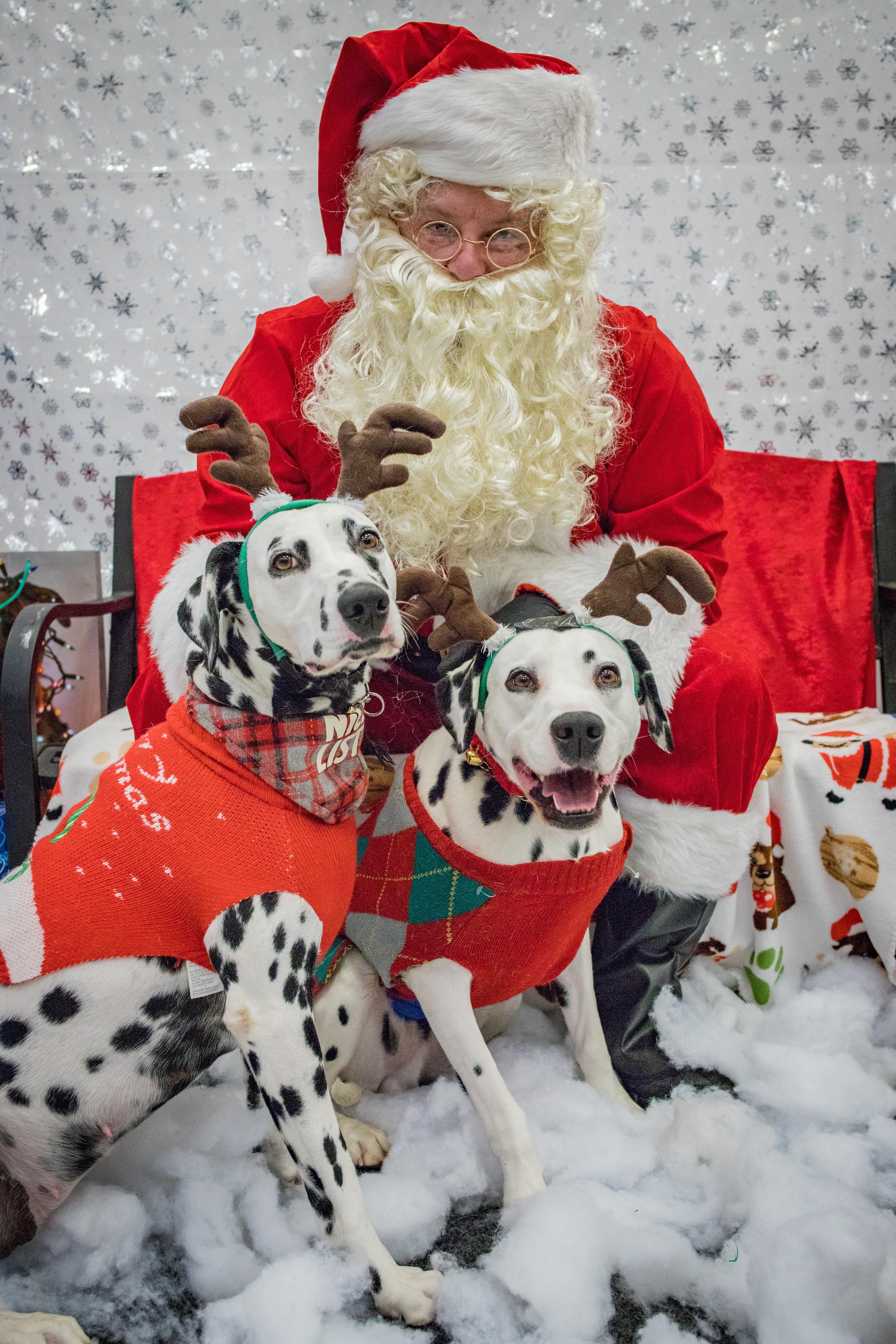 WCHS Pet Photos with Santa