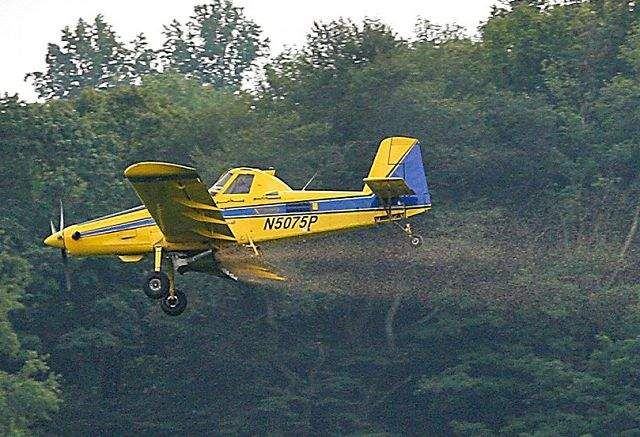 Cover Crop Aerial Planting Opportunity Available