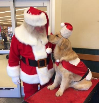 Santa Dog in Ortonville
