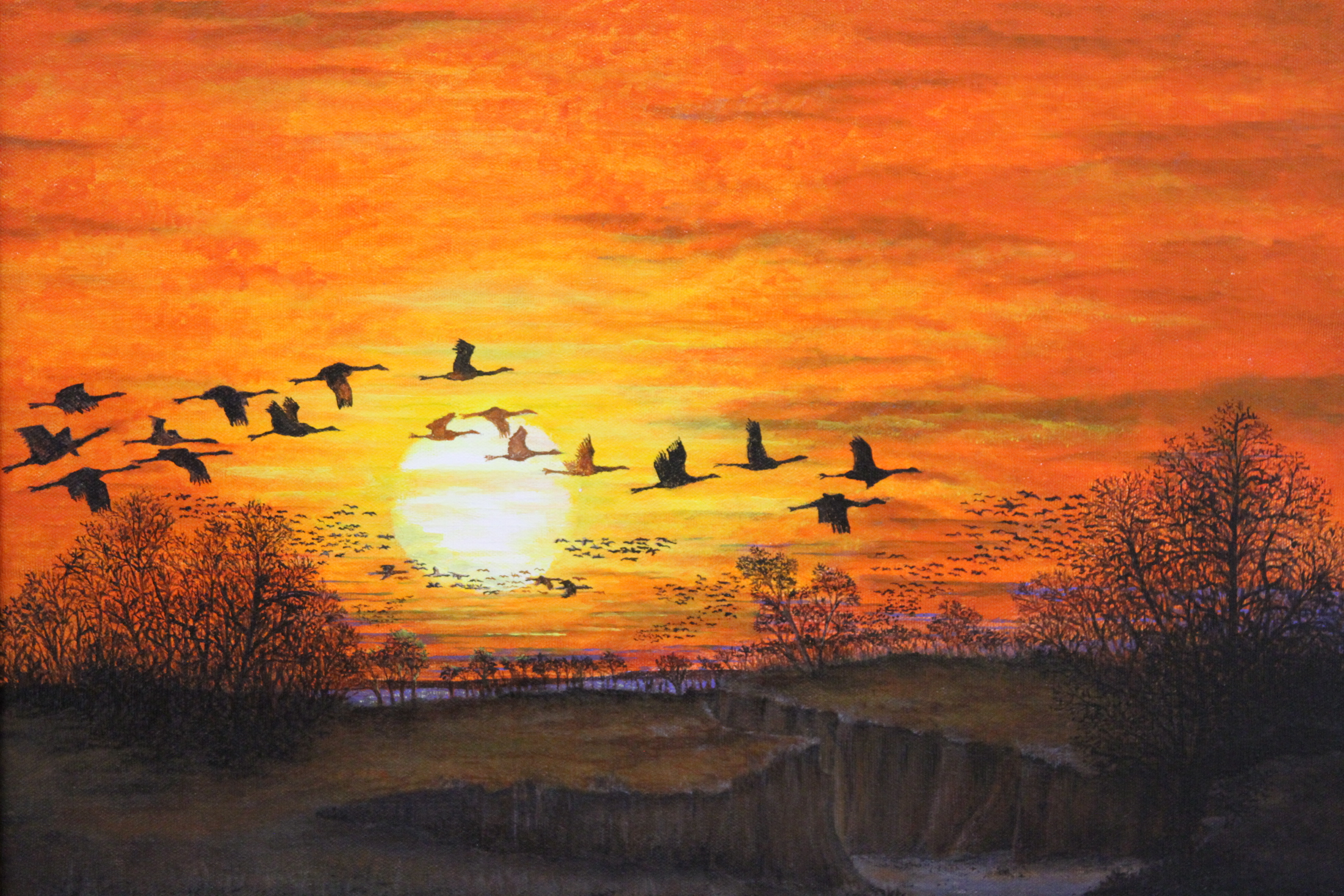 Wings Over the Platte