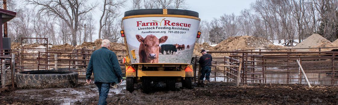 Livestock Feeding