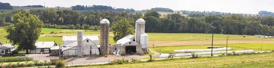 Miller's Biodiversity Farm
