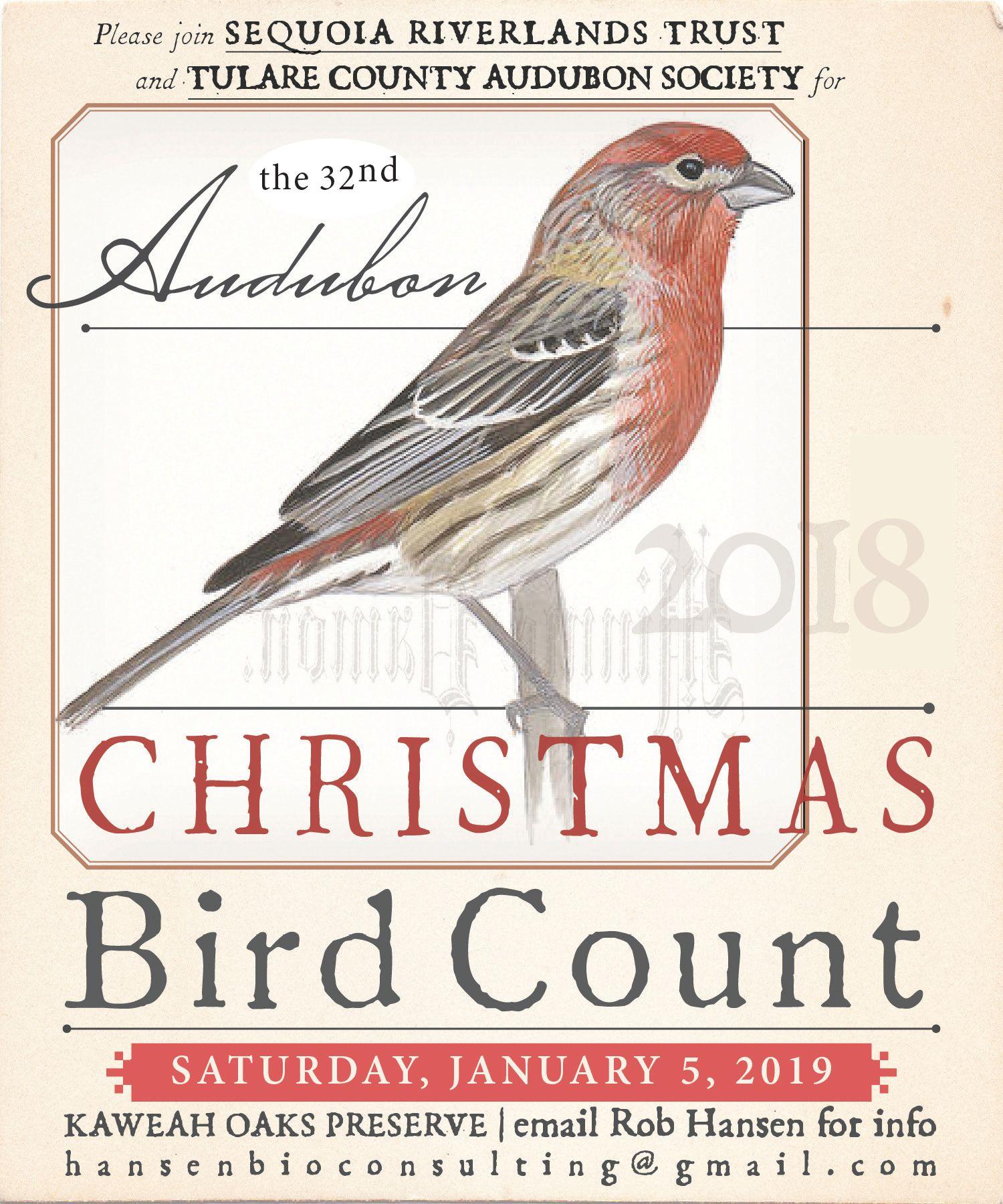 Audubon/SRT Christmas Bird Count returns January 5