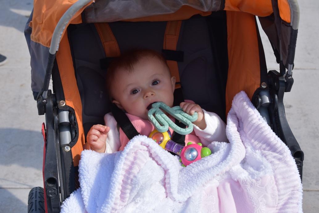 2577 Baby in Stroller