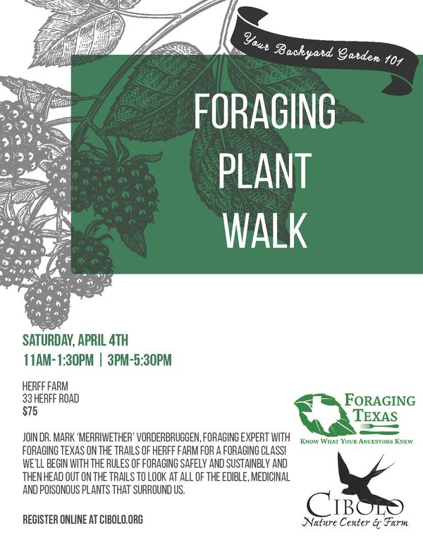 FARM: Foraging Plant Walk