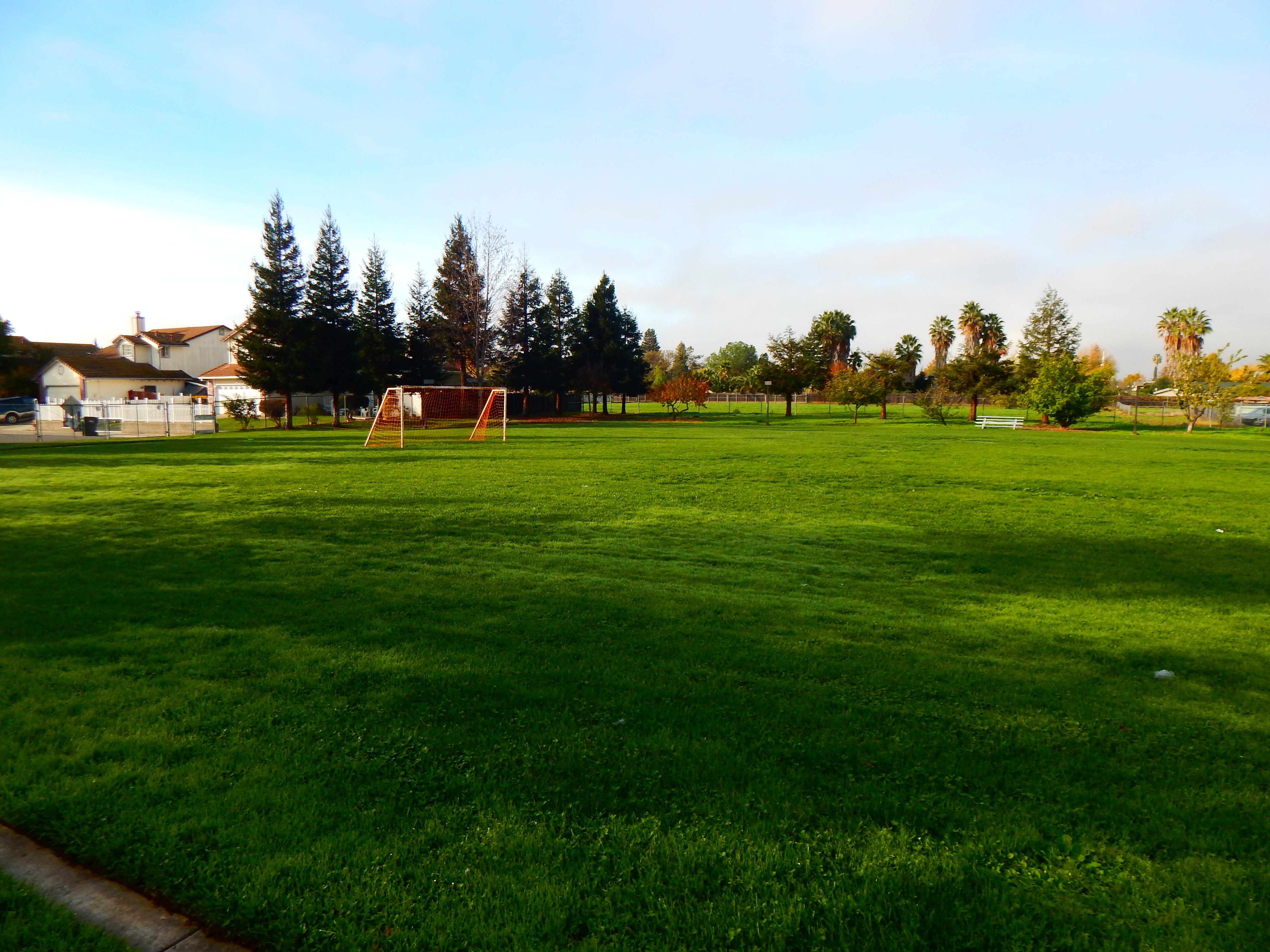 Teichert Outdoor Yard