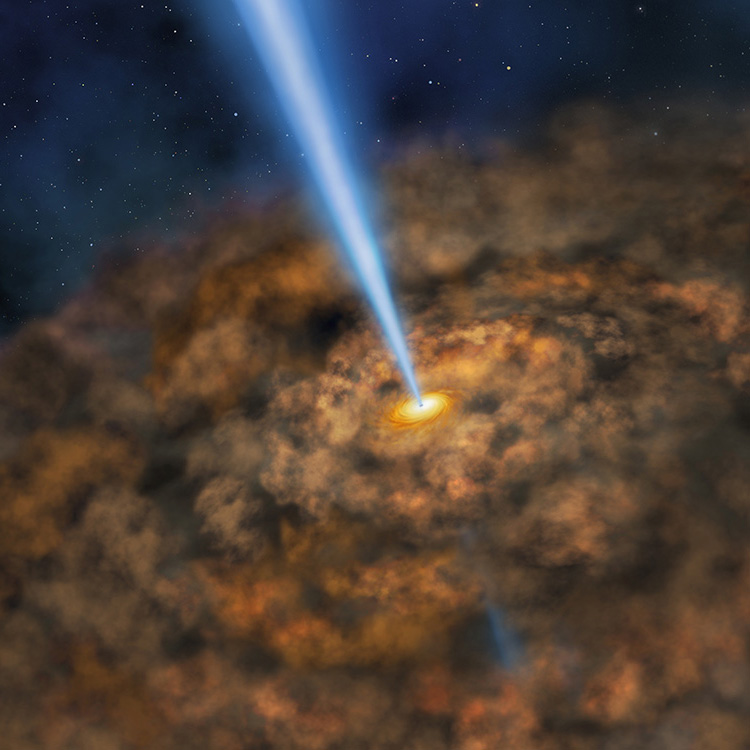 Are Supermassive Black Holes Galactic Regulators?