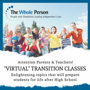 """Graphic with title """"Virtual Transition Classes"""""""