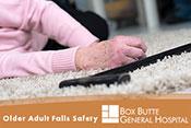 Older Adult Falls Safety