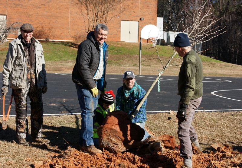 The Winterville Tree Commission