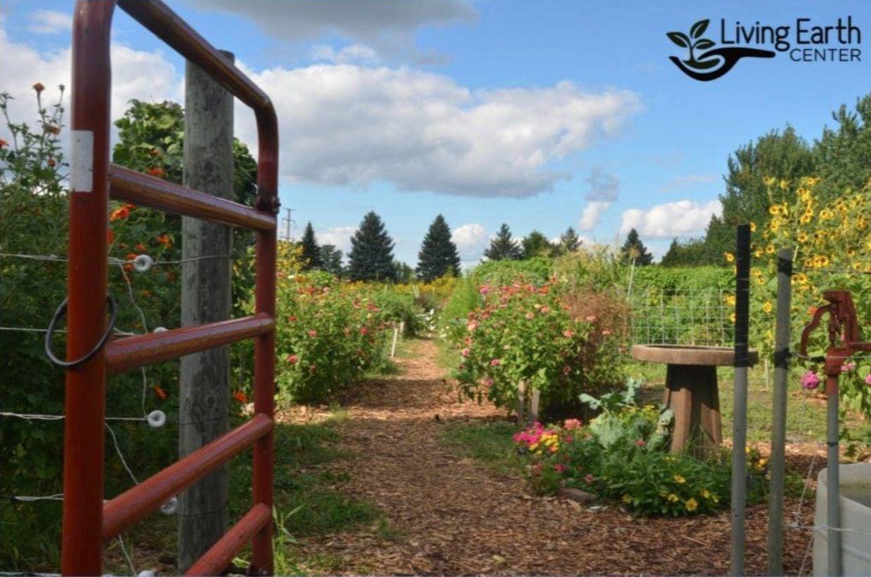 Current Status Regarding Future of Community Garden